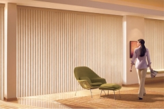 vertical blinds7